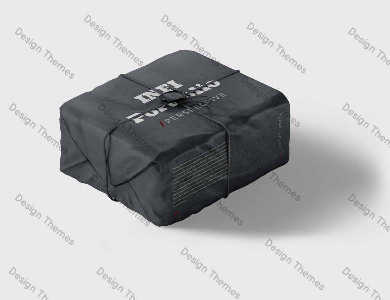 Pilferage proof package