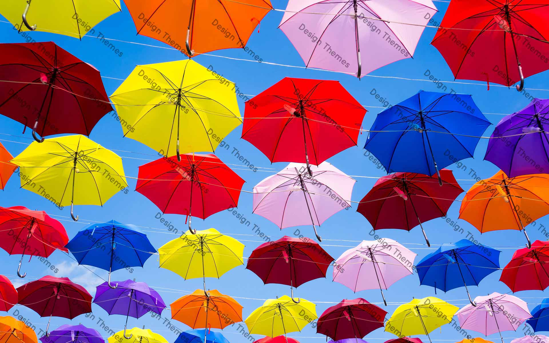 Colorful landing of umbrellas